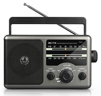 AM FM Portable Radio Transmitter (Greadio)